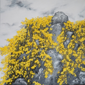 Forsythia Flowers On Cliff